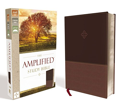 The Amplified Study Bible, Leathersoft, Brown [Large Print]: Zondervan: 9780310440802