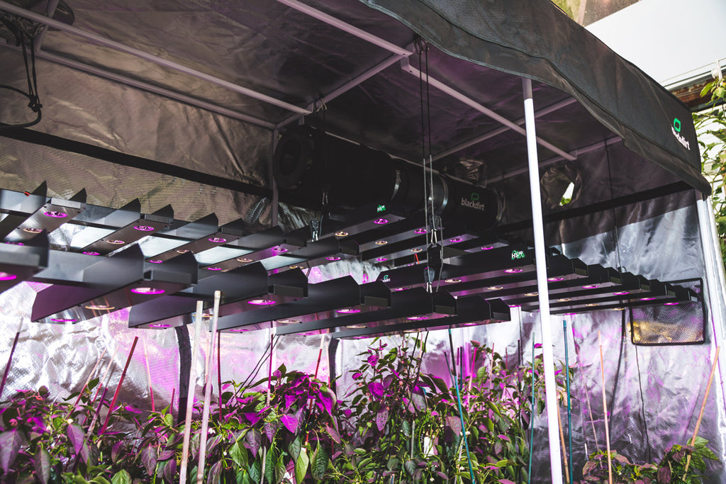 2'x4' LED Grow Light - FREE Shipping