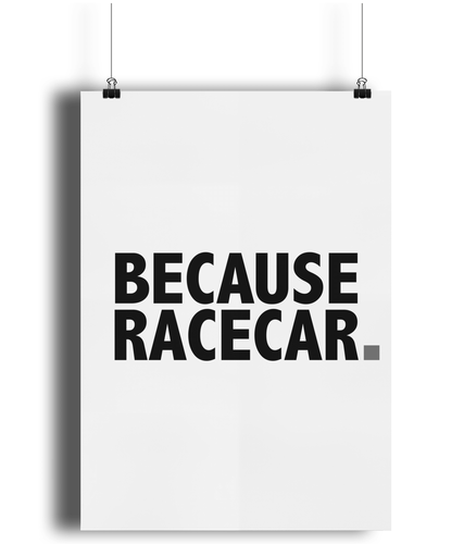 Because Racecar Poster (grey)