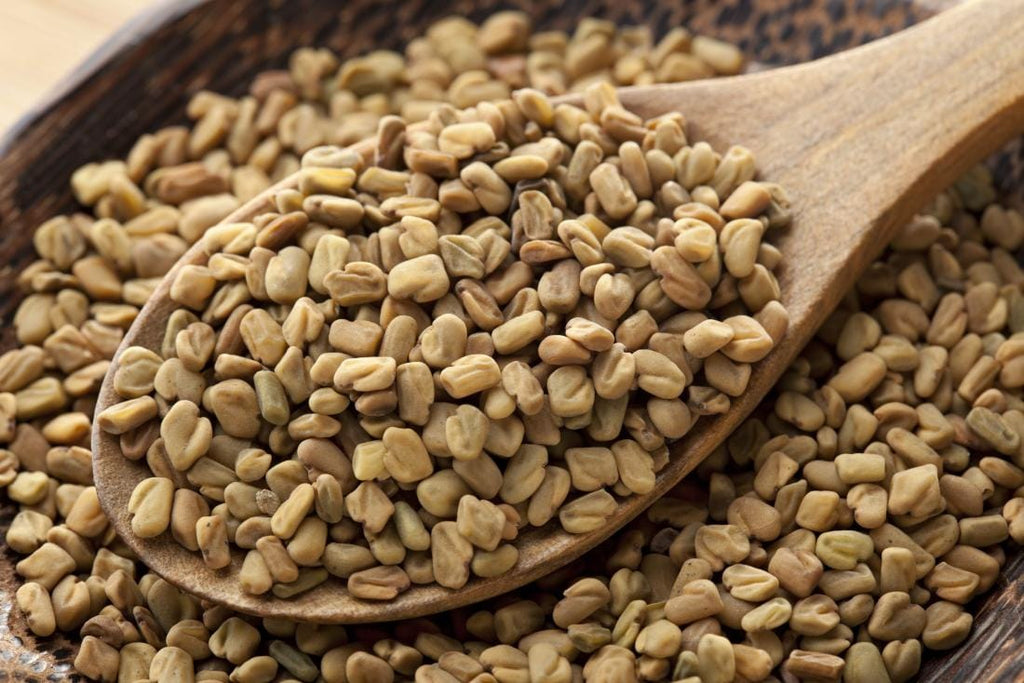 Blog Post 15: Fenugreek and why we love it ❤️