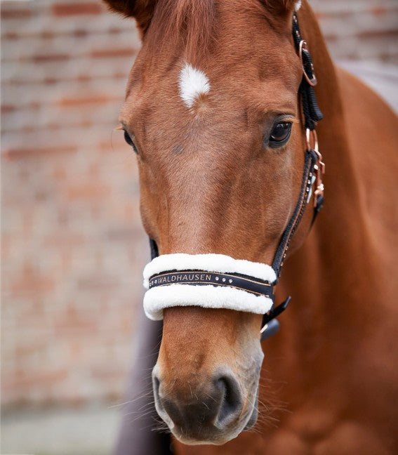 Waldhausen ''Rose Gold Elegant'' Headcollar
