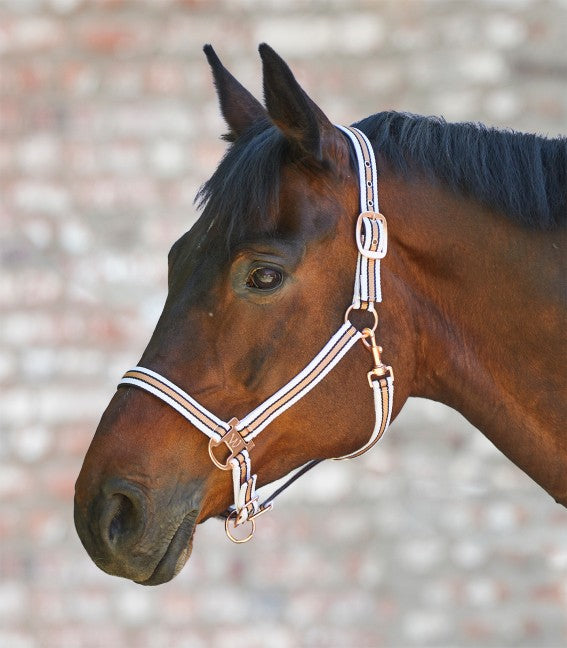 Waldhausen ''White Rosé Shine'' Headcollar