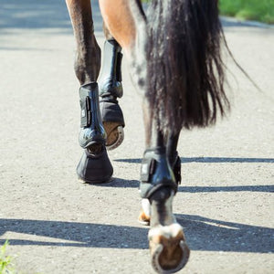 Horze ''ProTech'' Tendon and Fetlock Boots