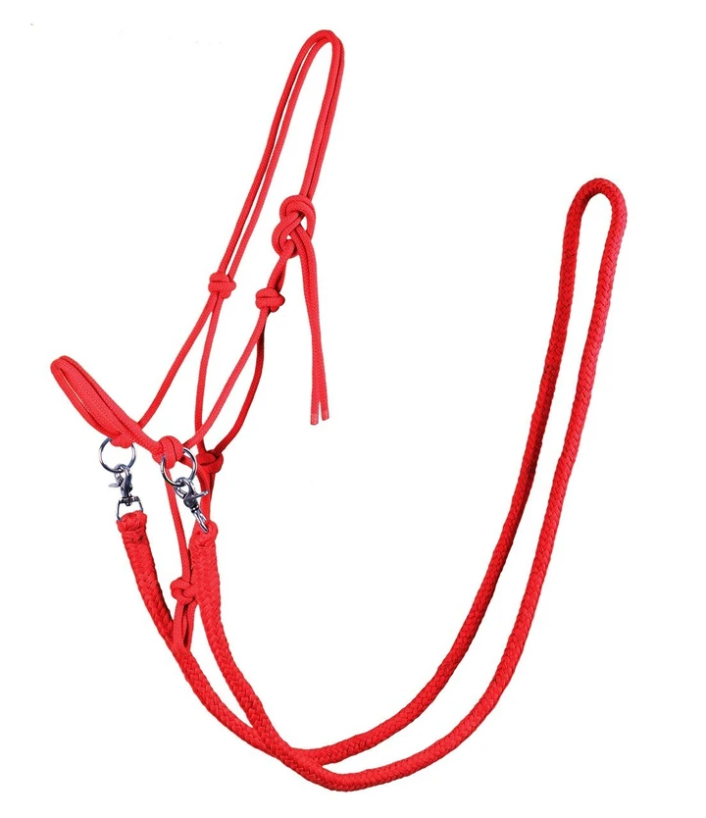 QHP ''Red Colour'' Riding Headcollar with Reins