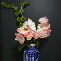 Fresh pink and white flowers in blue and white vase