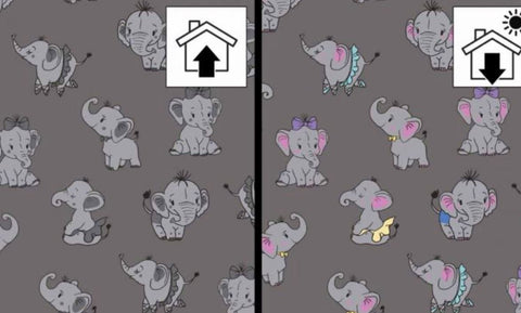 Color Changing Preorder Jan 2020 - Elephants Color Change Fabric