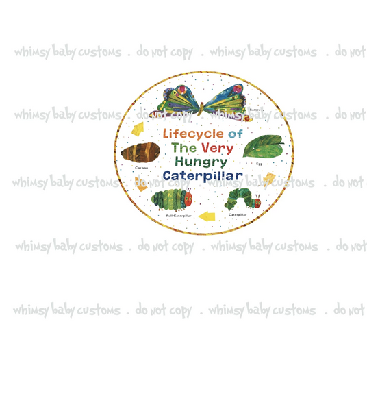 894 Hungry Caterpillar Life cycle  Child Panel