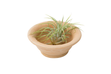 Terrace Pinch Bowl
