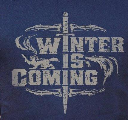 Winter Is Coming - T-shirt (Mens)