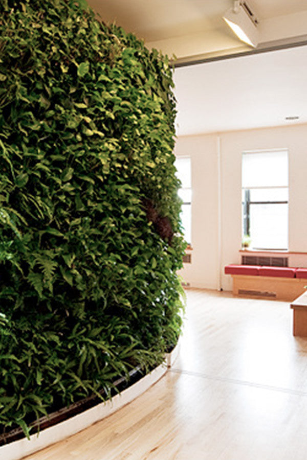 Living Green Walls