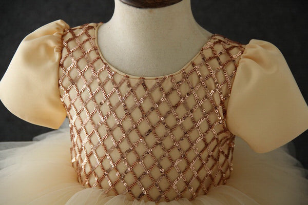 Olivia tutu dress in champagne