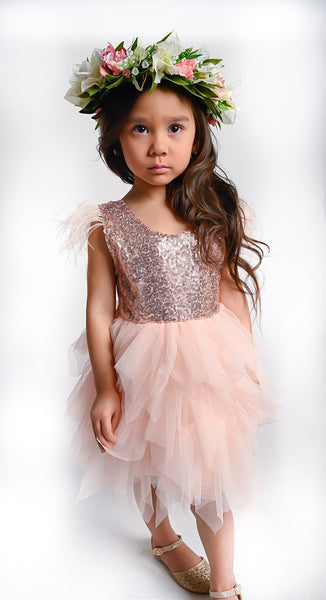 Aurelia sequined tulle dress in soft pink