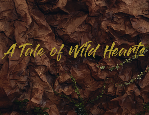 A Tale of Wild Hearts: behind the scene