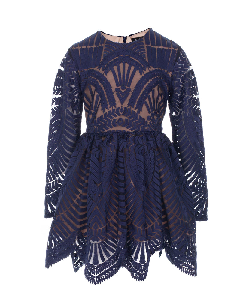 Embroidered Mesh Dress