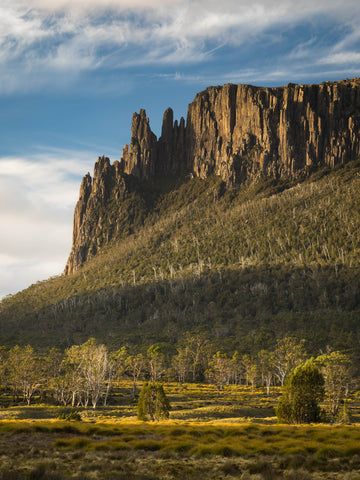 Overland Track Tour (Spring)