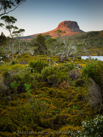 Overland Track Tour (Summer 2019)