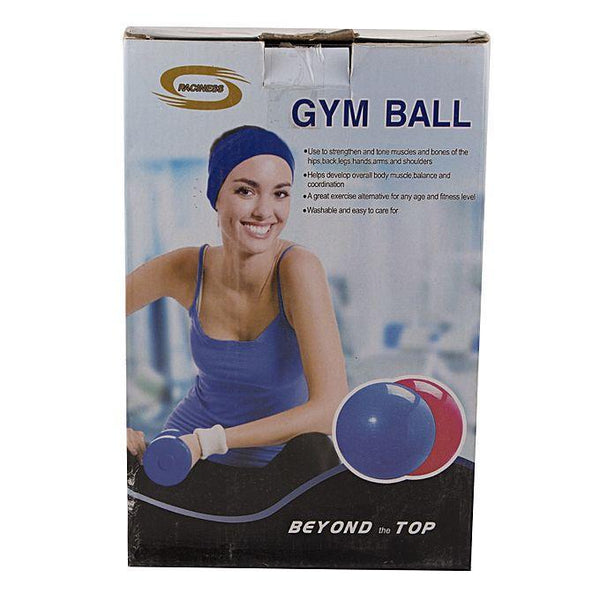 65 - High Quality Gym Ball - Silver Tajori