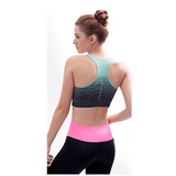 Buy the Women's High Stretch Sports Bra. Shop  Online - Kewlioo