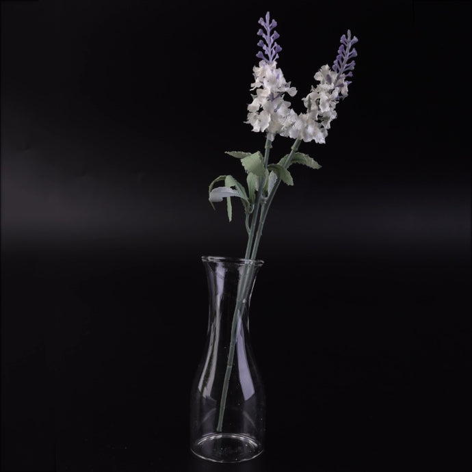 Creative Glass Hydroponic Vase