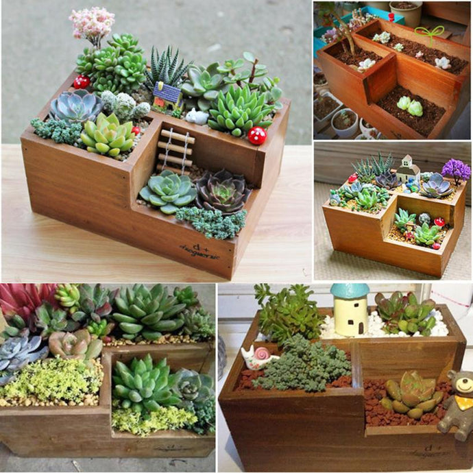 Wooden Succulent Square Flower Pot