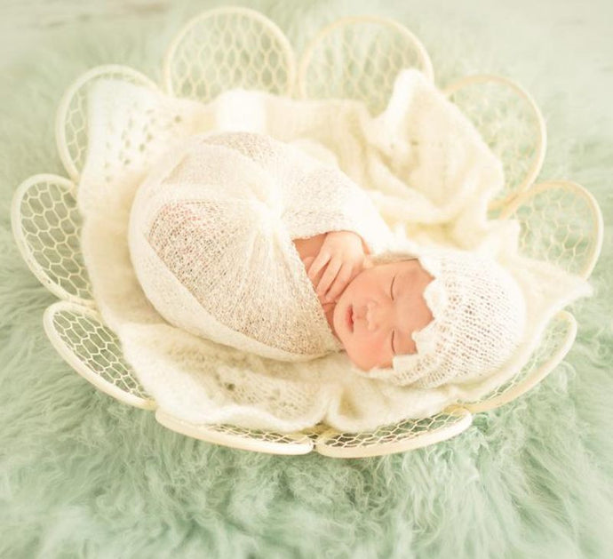 Newborn Basket Baby Nest Photography