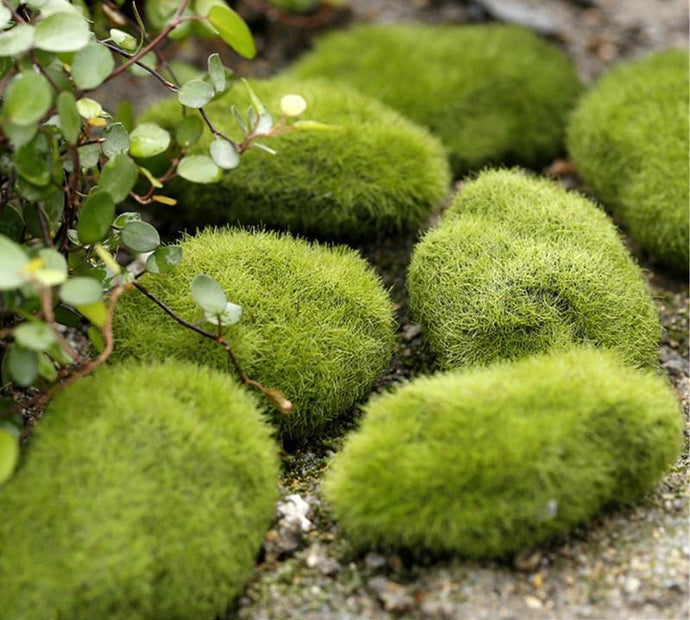 Green Artificial Moss Stones