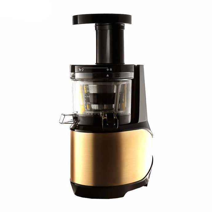 Electric Low Speed Fruit Juicer