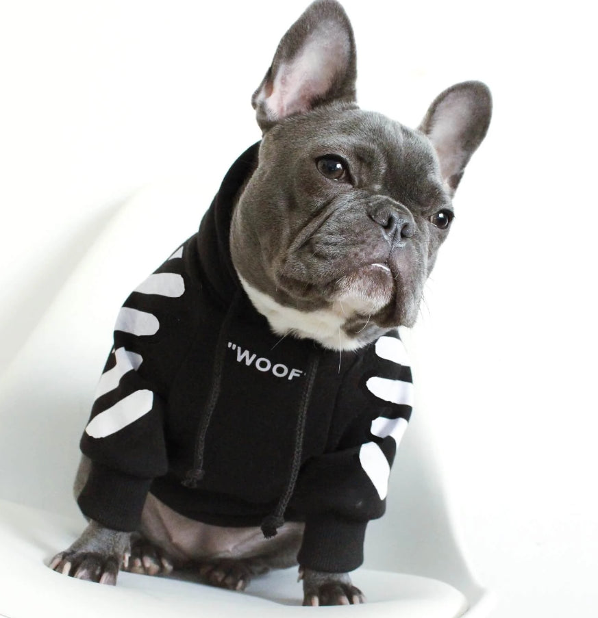 off white dog hoodie