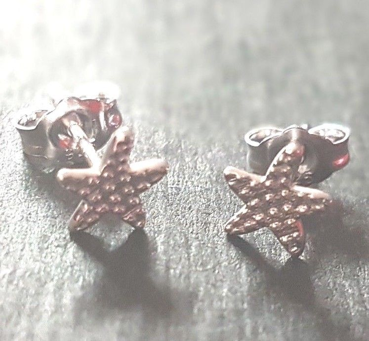 New 14K White Gold Layer on 925 Sterling Silver Shining Star design Earrings