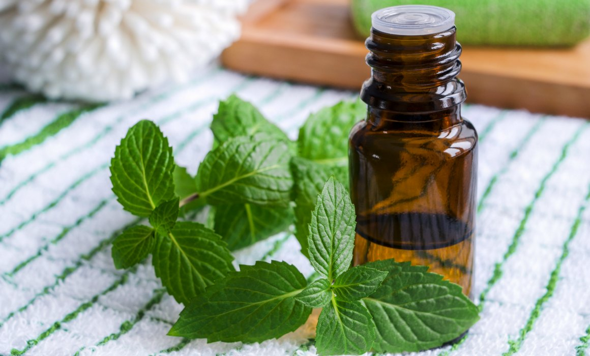 Peppermint Essential Oil (Japanese)