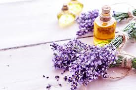 Lavender Essential Oil (40/20) - 15ml