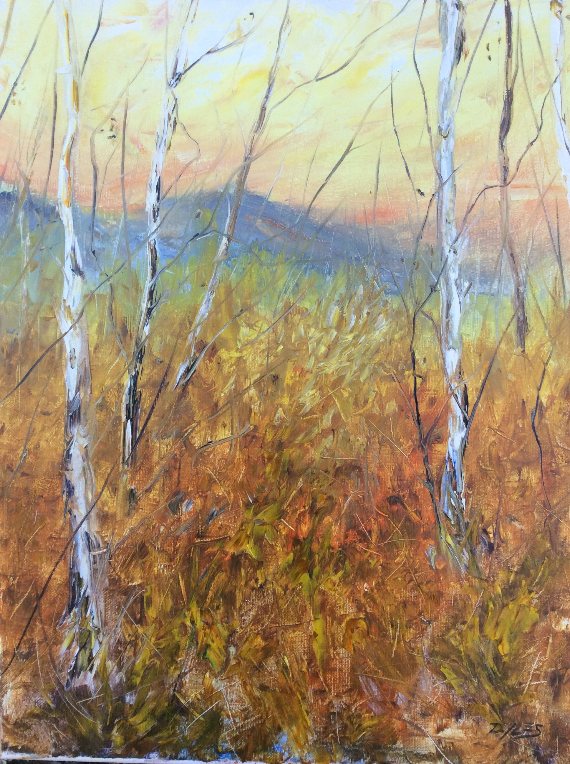 "20""x16"" Original Oil Painting. Aspen In The Fall"