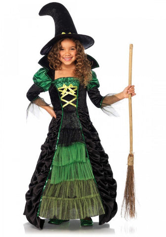 2 PC Storybook Witch Costume - worldclasscostumes
