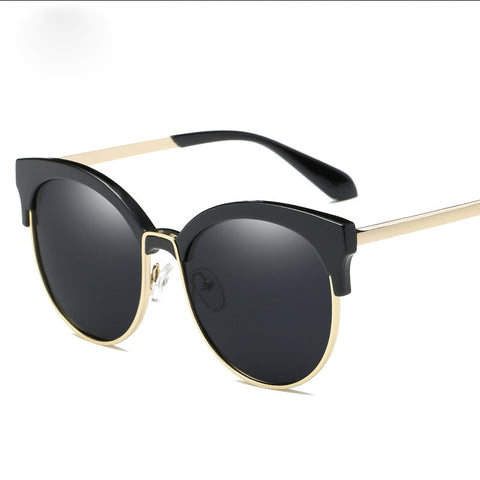 Polarized Men Black Browline Sunglasses