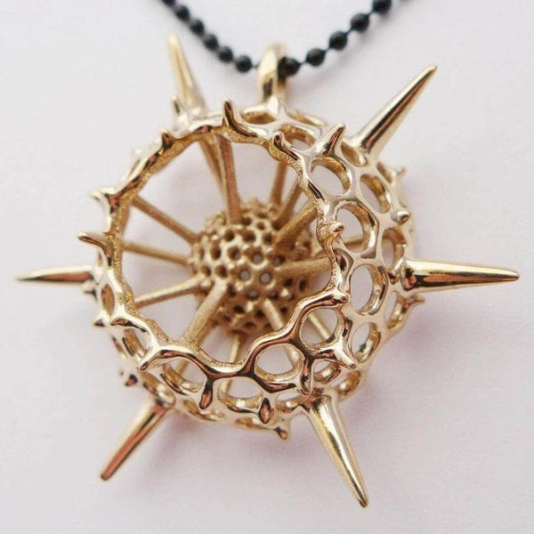 large spumellaria radiolarian pendant in polished bronze