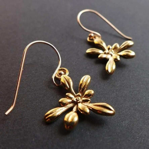 Arabidopsis Rosette Earrings Earrings [Ontogenie Science Jewelry] bronze