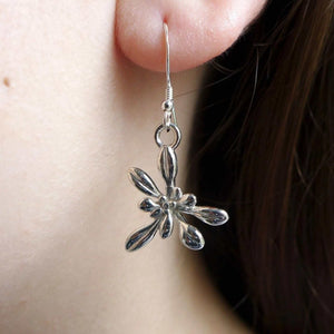 Arabidopsis Rosette Earrings [Ontogenie Science Jewelry] sterling silver