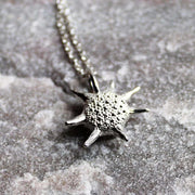 Baculogypsina Foraminifera Star Sand Pendant Ontogenie Science Jewelry