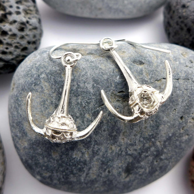 Ceratium Dinoflagellate Earrings sterling silver