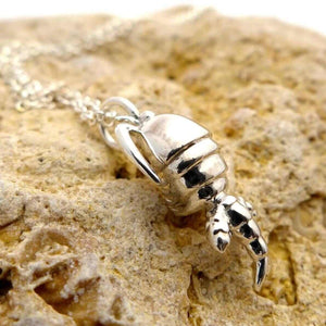 Science Jewelry: Silver copepod pendant