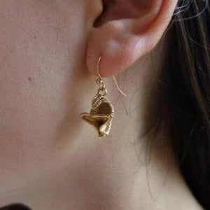 Dailyatia Small Shelly Fossil Earrings Earrings [Ontogenie Science Jewelry]
