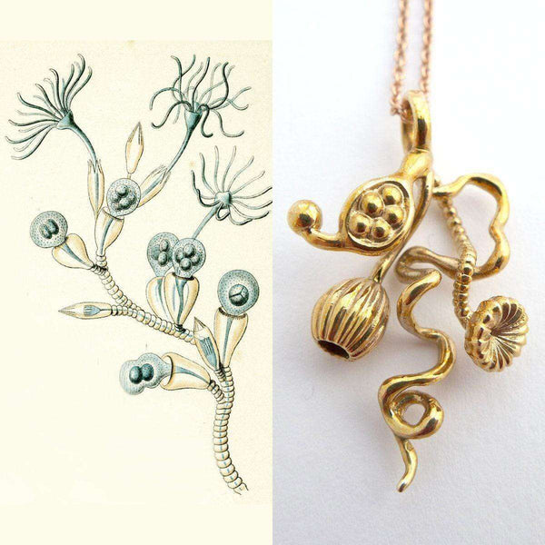 Opercularella Hydrozoan Pendant Pendant [Ontogenie Science Jewelry]