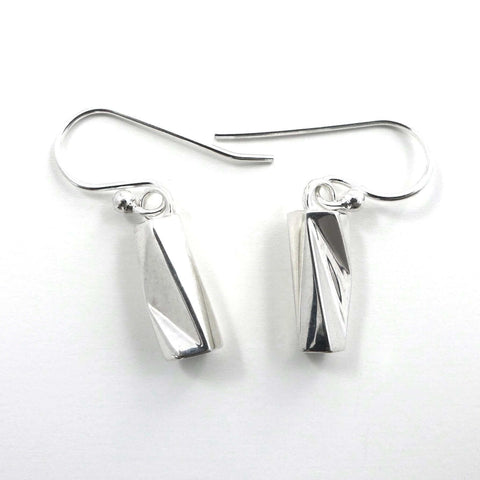 Scutoid Earrings Earrings [Ontogenie Science Jewelry]