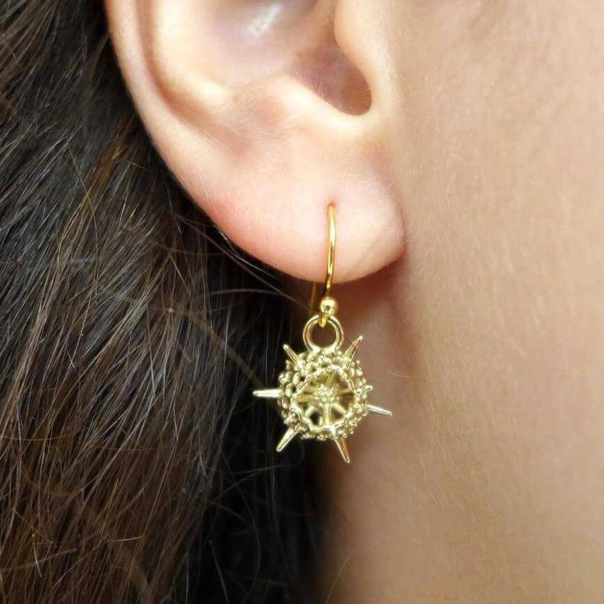 Science Jewelry :spumellaria radiolarian earrings in brass