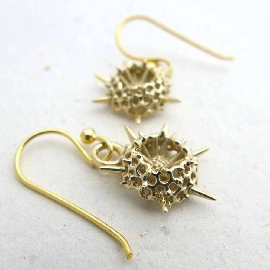 Science jewelry: spumellaria radiolarian earrings in brass