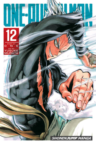 ONE PUNCH MAN GN VOL 12 (C: 1-0-1)