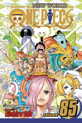 ONE PIECE GN VOL 85 (C: 1-0-1)