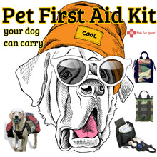 Pet First Aid Kit for Dogs, Cats + People on the Go!
