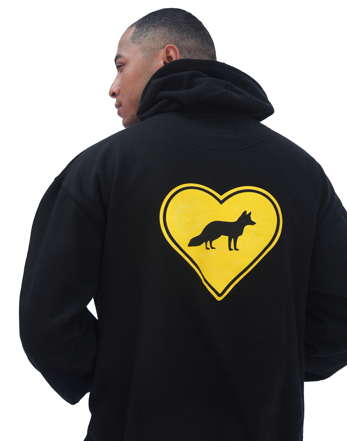 products/FTA_blackhoodie_back-fox_guy.png