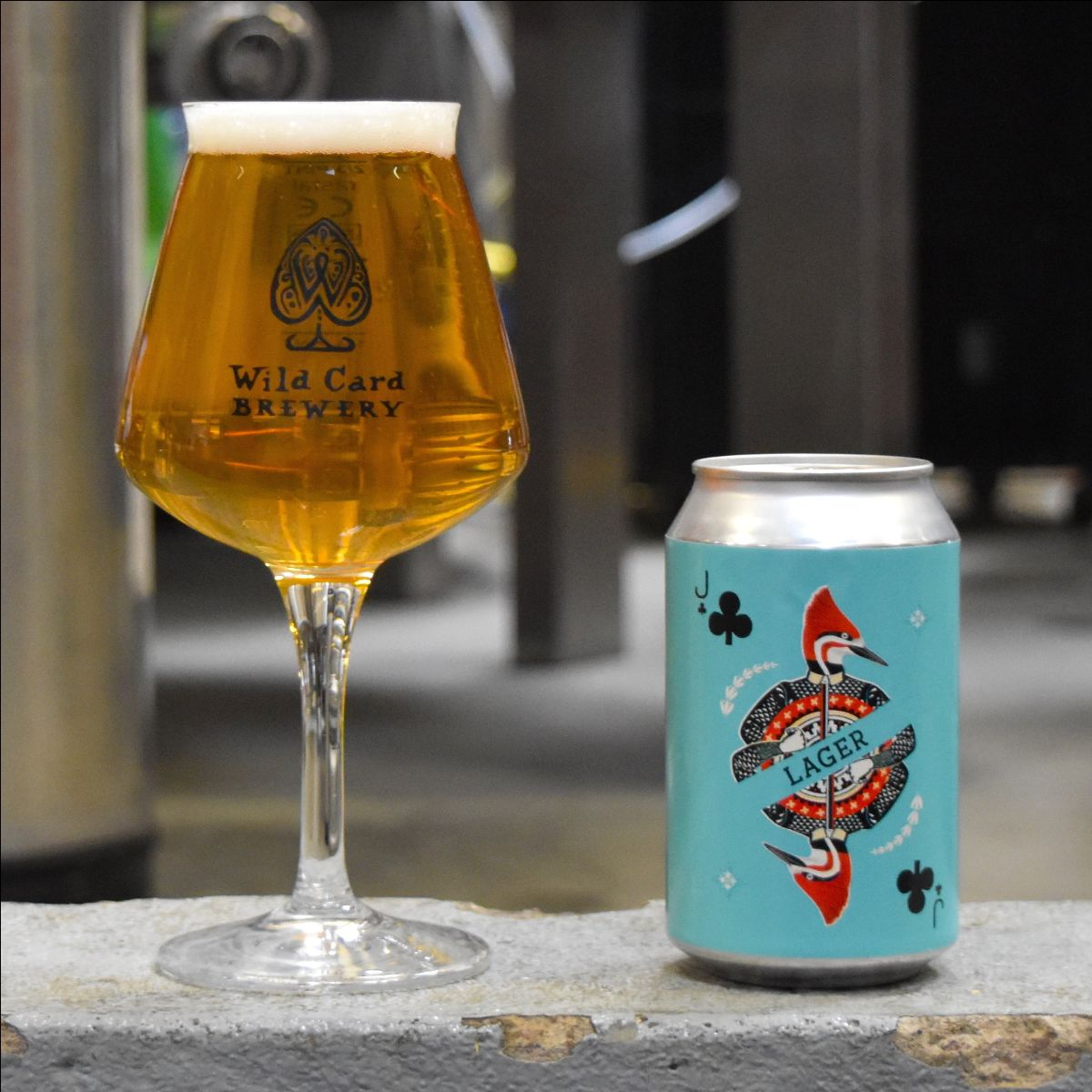 Wild Card Lager Can 330ml - 4.4%